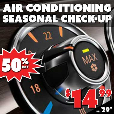 Air Conditioning Seasonal Check Up