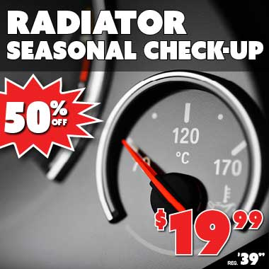 Radiator Seasonal Check Up